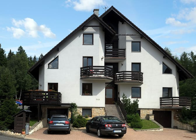 Apt for 4 persons with WLAN in Harrachov R3467