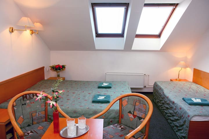 Comfortable Double/Triple Room - Praga - Bed & Breakfast