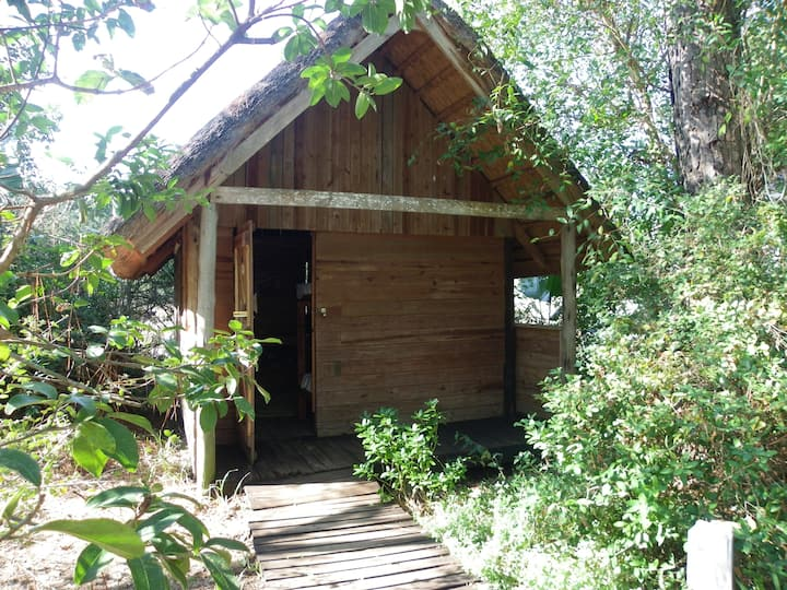 Triton Backpackers wooden budget cabin