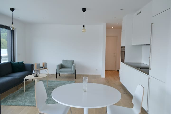 Central upscale & modern 1BR flat with city views