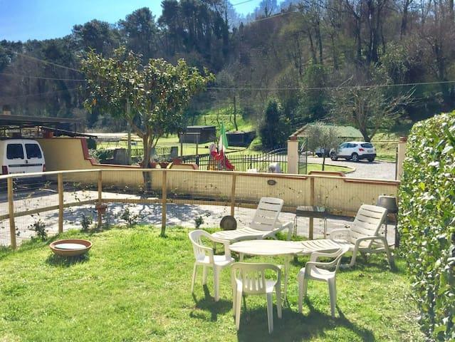 Apuane e Versilia - Camaiore - House