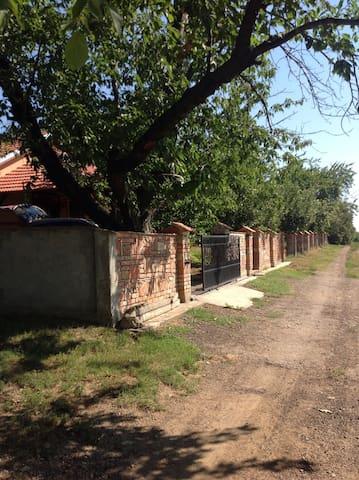 Penemiga house - Krušedol Selo - Hospedaria