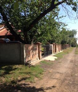 Penemiga house - Krušedol Selo - Casa de hóspedes