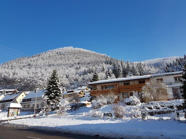 Ferienwohnung am Feldberg & HochschwarzwaldCard