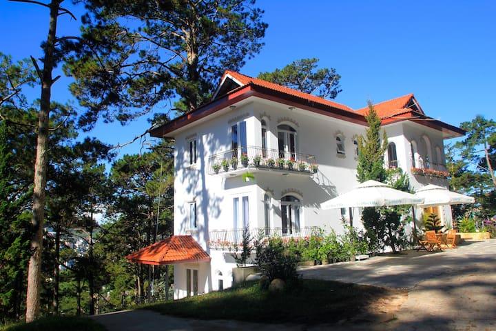 Villa Le Olive