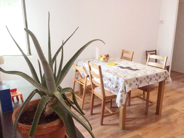 Fantastic and familiar flat in MADRID RÍO