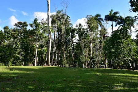 Camping space steps from Guajataca Lake
