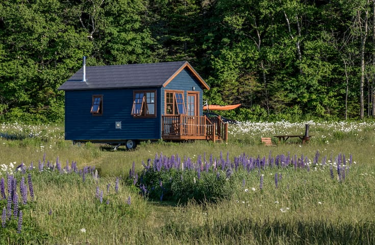 Small ecological cabin on wheels tiny House style