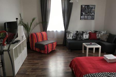 Apartment P.R. - Прага - Квартира
