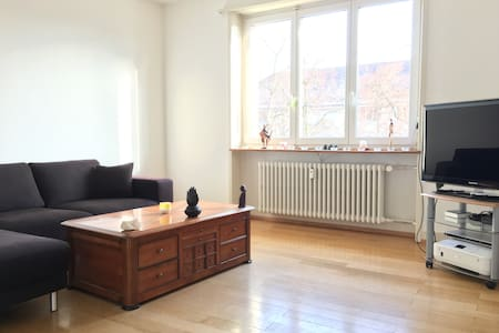 Fully equipped flat- Only weekly/monthly rental - Basel