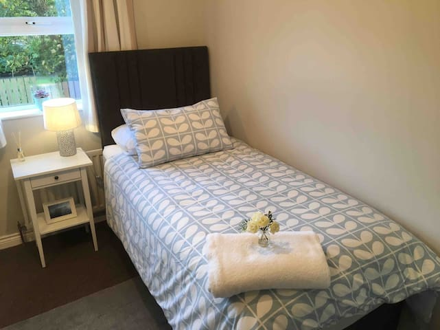 Bright single room in Ballymoney