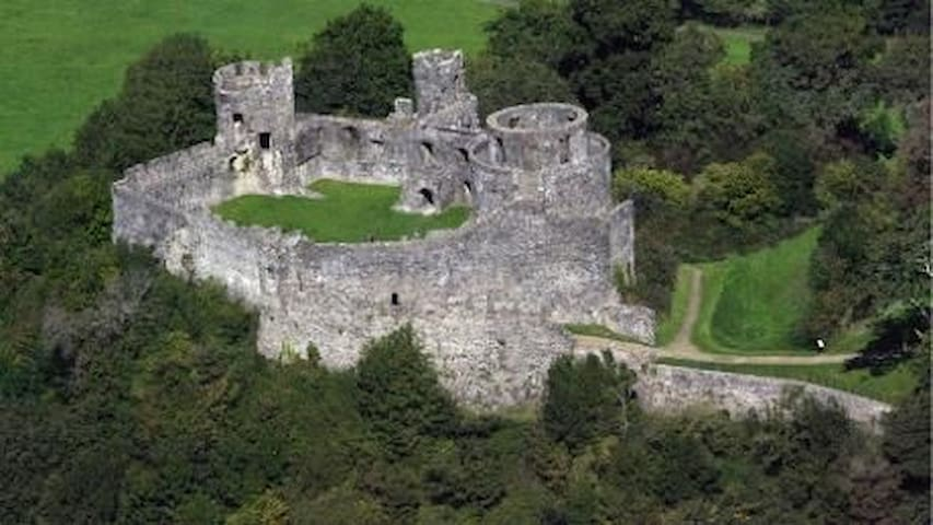 And in Llandeilo you will find the magnificent Dinefwr Castle and Newton House
