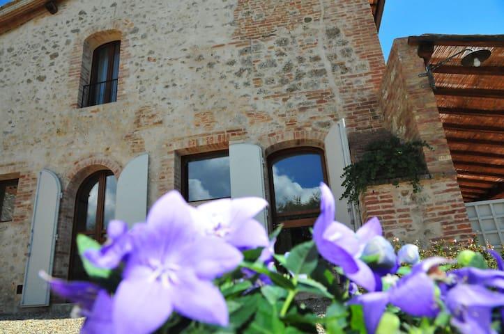 Charming Studio inSiena countryside - Monteroni D'arbia - Daire