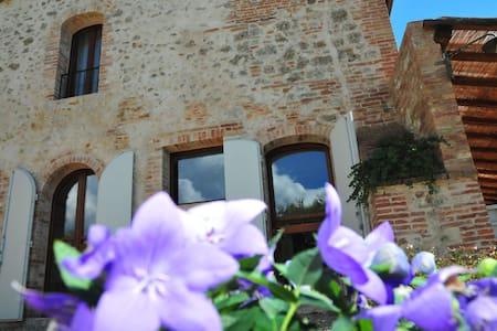 Charming Studio inSiena countryside - Monteroni D'arbia - Apartament