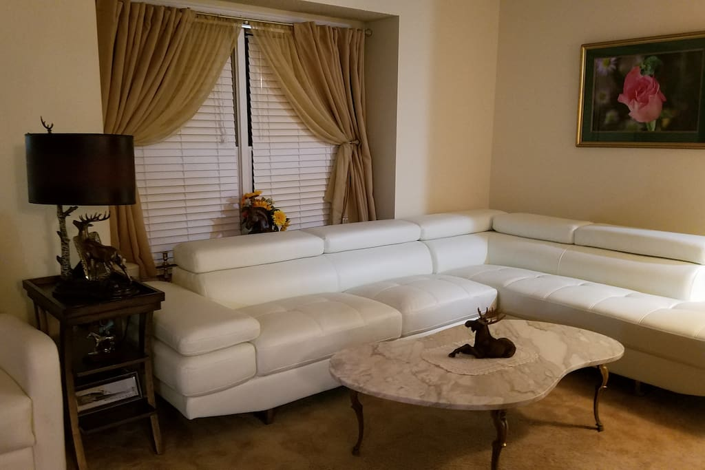 Leather sectional living room