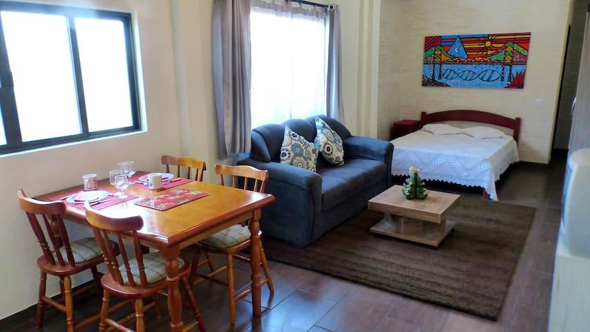 Belo apto/estudio a solo 100m de la playa - Florianópolis - Apartment