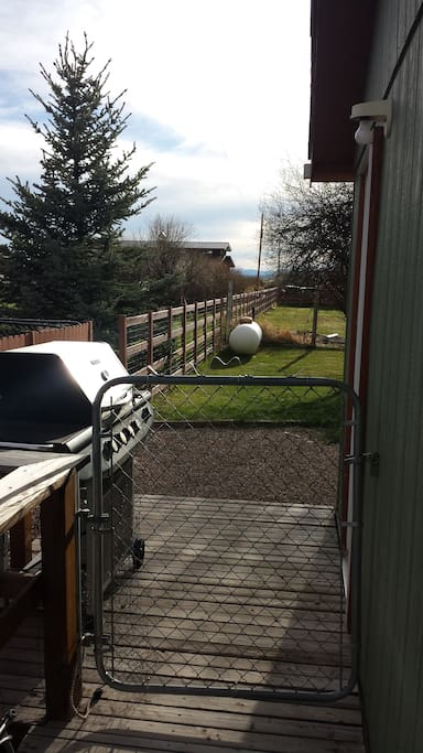 Back door with gas grill