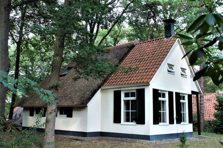 Unieke vakantiewoning De Witte Bergen 18 IJhorst