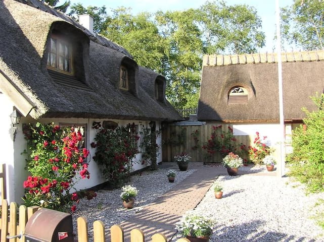 Idyllic thatched house near station - Ølstykke