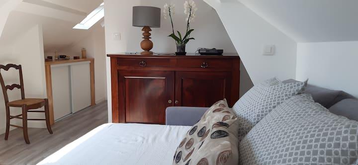 Chambre cosy au cœur du vieux Saint Pierre.