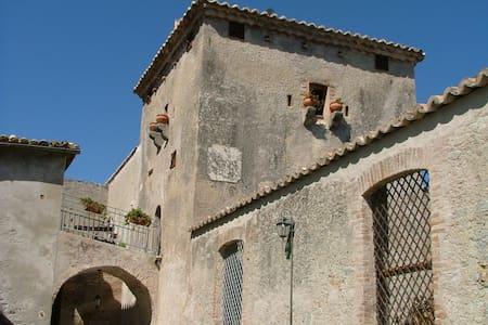 """""""San Giovanni"""" the house on a farm - Stilo - Haus"""