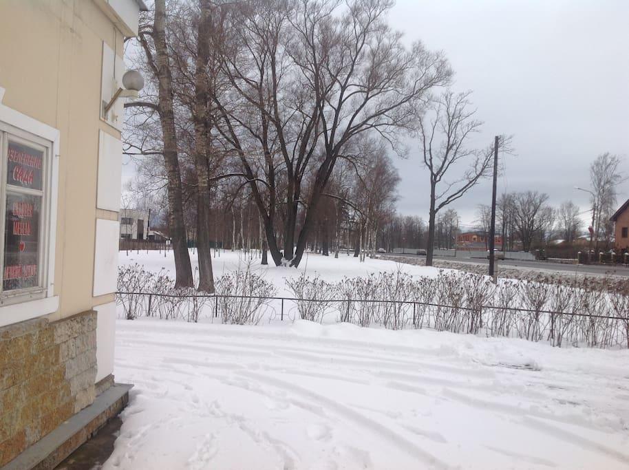 Вид на Санкт-Петербургское шоссе.