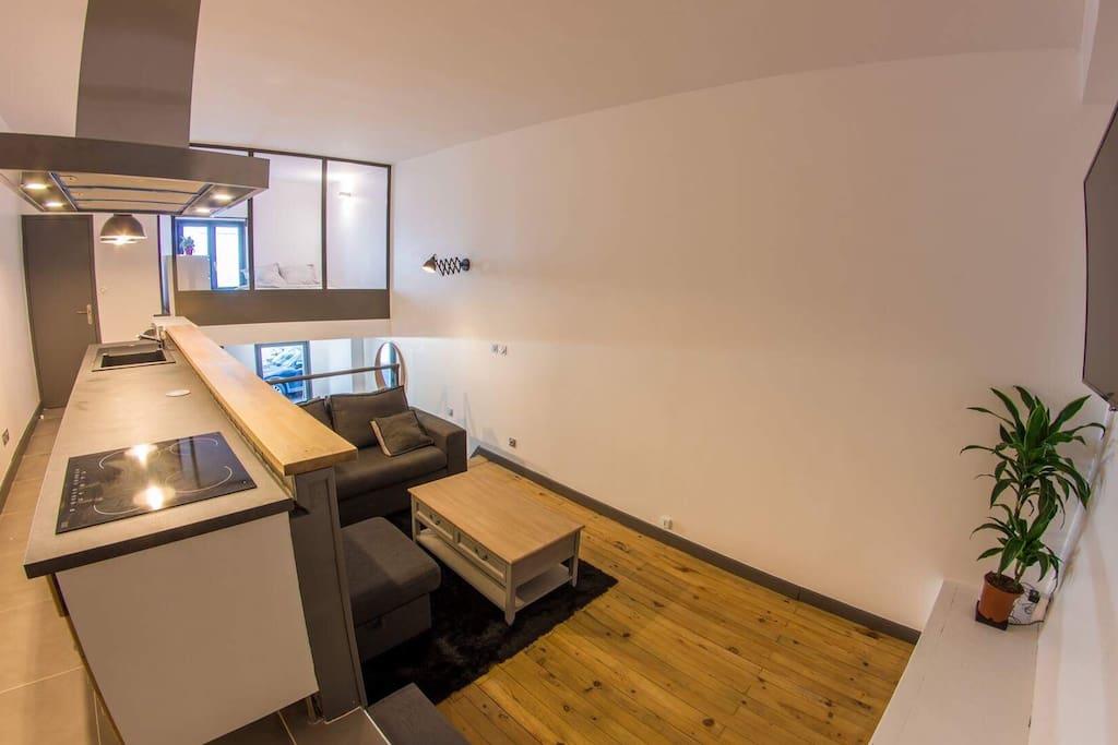 Loft 40 m2 atypique appartements louer lyon for Atypique appartement lyon