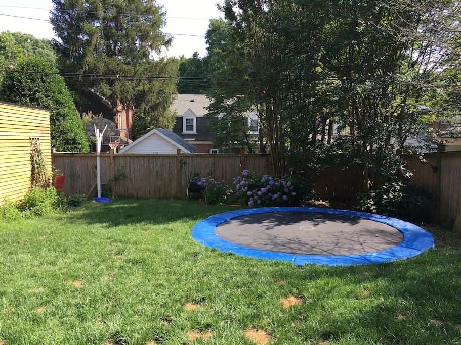 yard with in-ground trampoline