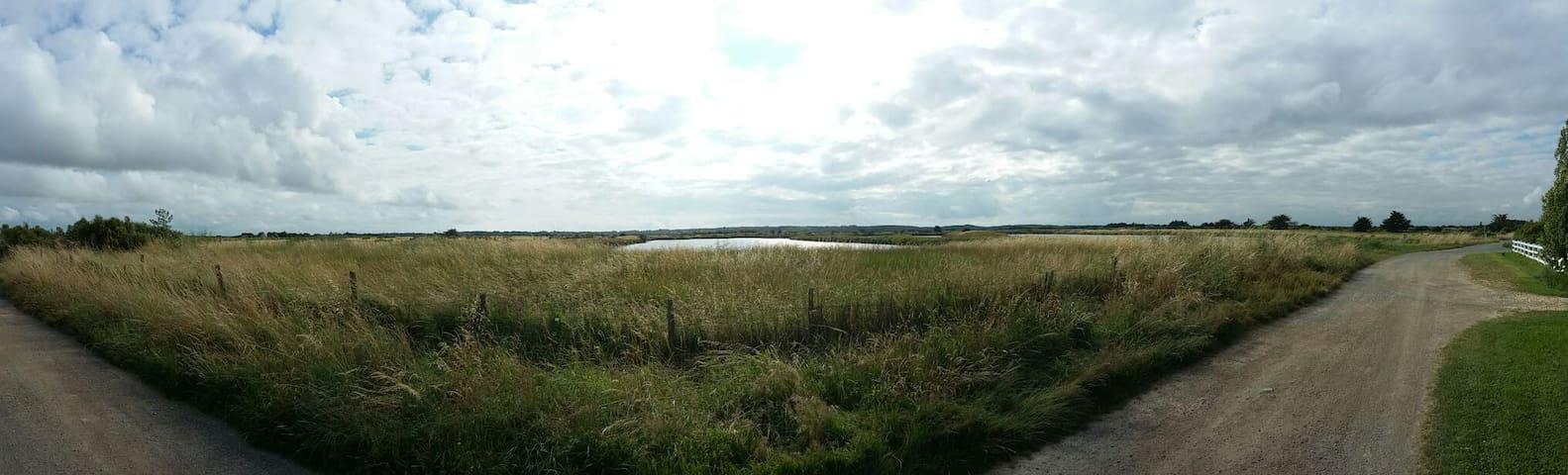 Chambre au bord des marais