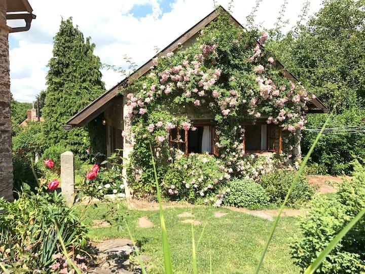 Buddha´s Garden