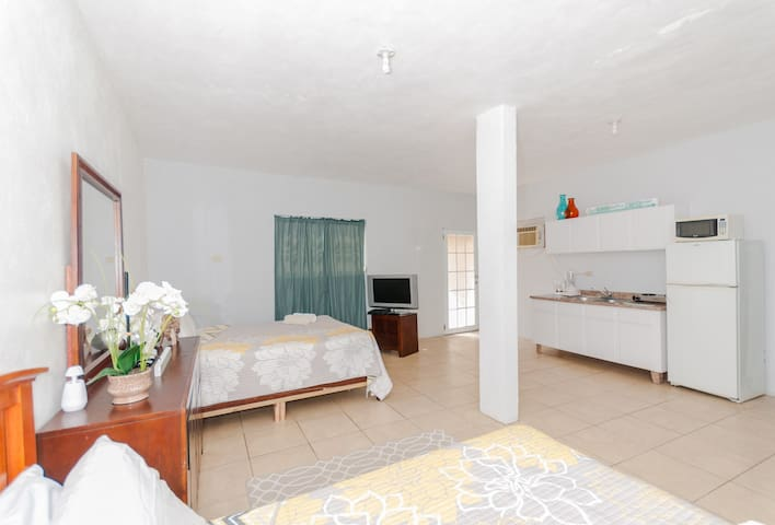 Sol del Atlantico 102, 1 Bedroom Studio Apartment - Arecibo - Apartment
