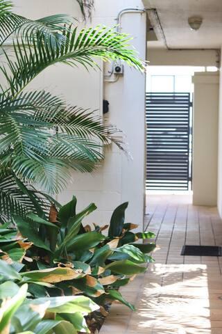 Beautiful family-friendly beachfront apartment! - Main Beach - Apartamento