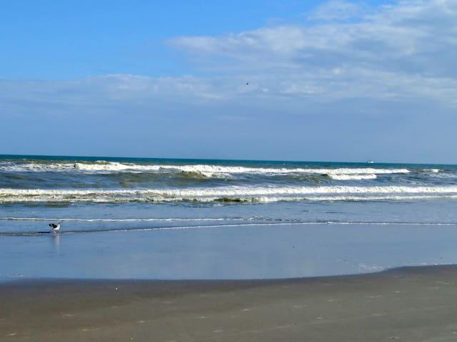 2 bed, 2 Bth Ocean View Cocoa Beach