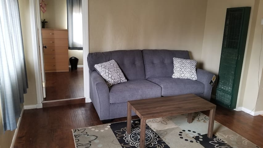 Living room with new Sofa 12/21/17