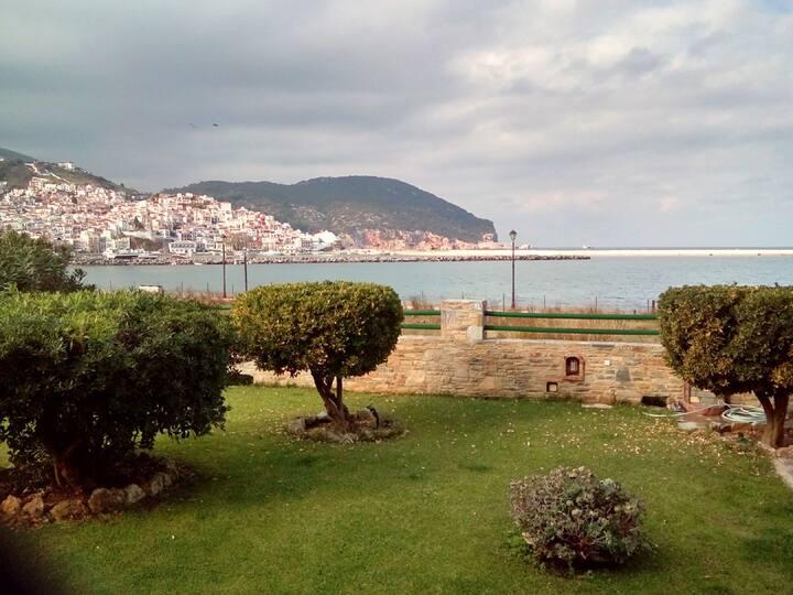 Skopelos garden view studio