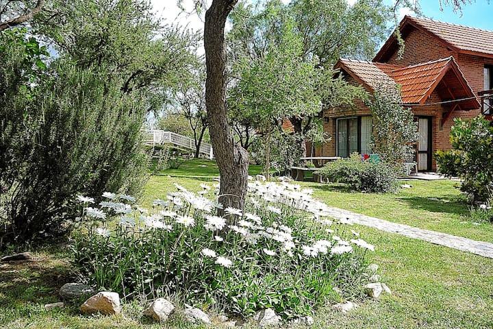 Cabañas con vista en Villa de Merlo