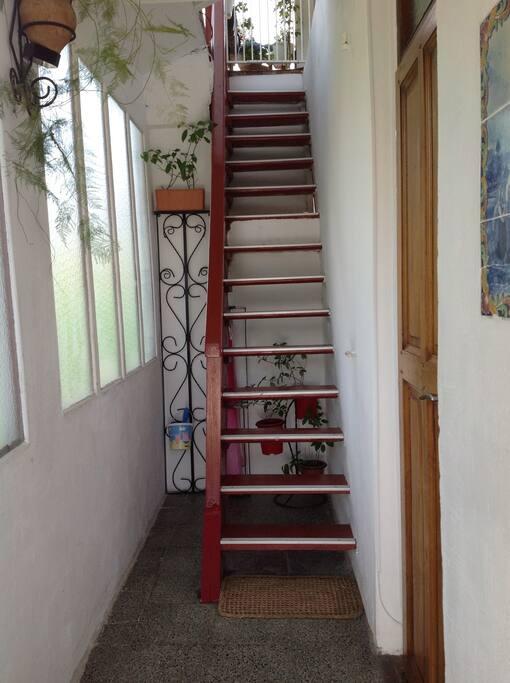 Le petit escalier rouge qui mène...