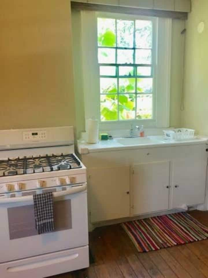 Historic 1 bedroom 2 blocks from streetcar!