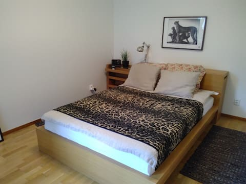 Close to city center, room with access to patio,