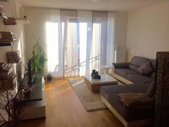Modern eingerichtete Wohnung zentru(SENSITIVE CONTENTS HIDDEN)ahe in Fürth - Fürth