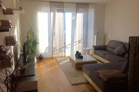 Modern eingerichtete Wohnung zentrumsnahe in Fürth - Fürth