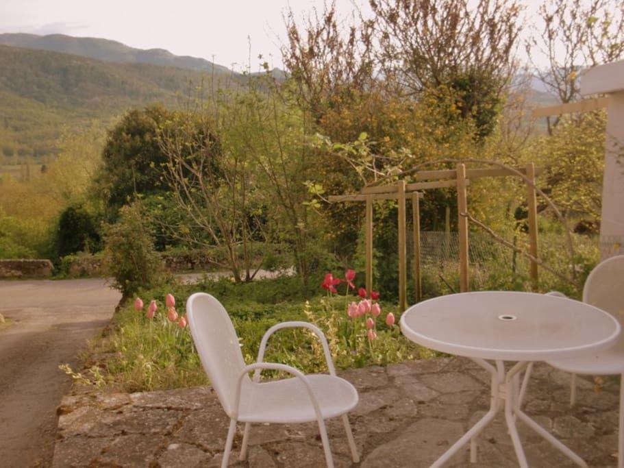 Terrasse et jardinet devant la maison