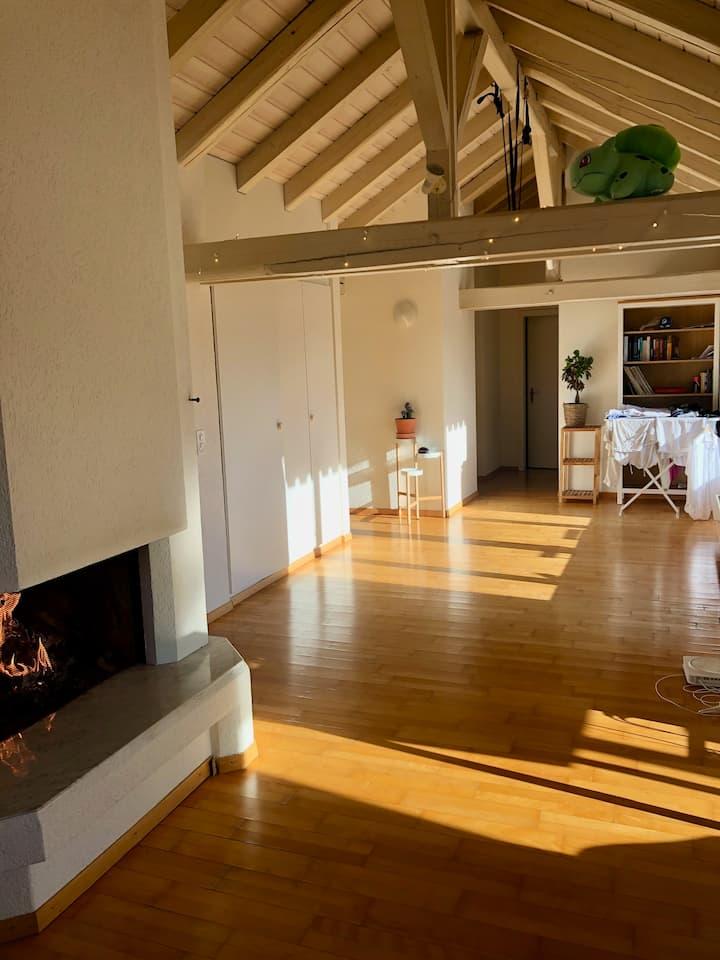Penthouse fireplace wooden flat Zurich.