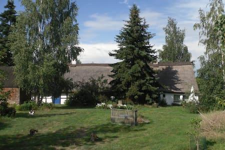 Eichhof Cottage - Ferienhaus im Grünen