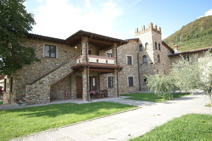 Apartment in Franciacorta with private terrace and shared pool