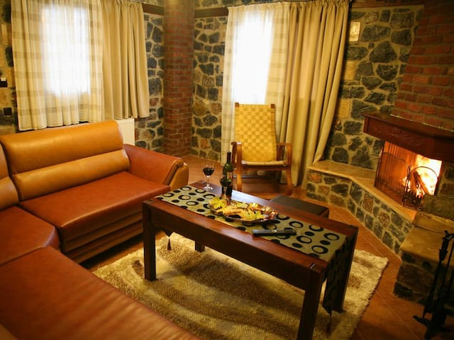 4 Guest Apartment with Fireplace, Loutra Pozar