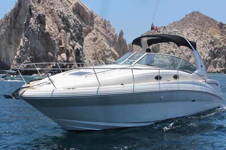 Luxury Yacht -34ft Searay Sundancer - Cabo Marina
