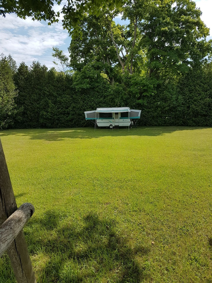 Camping At Secluded Cedar Grove