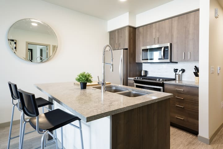 New and Fascinating 2 bedroom Apt in Downtown PDX