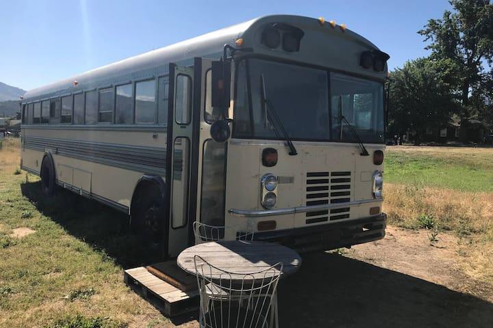 Magical Converted 35' Blue Bird School Bus